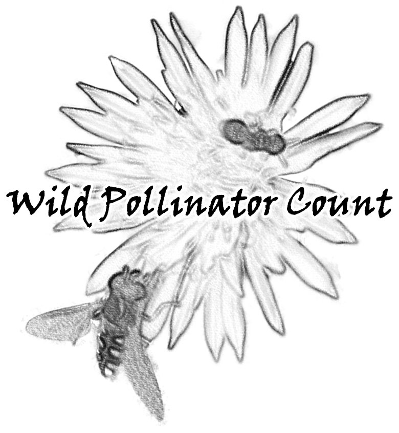 wild pollinator count Bees Not the Bees logowpc