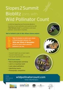 Wild Pollinator Count - November 2015 flyer