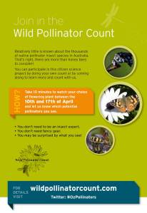 Wild Pollinator Count flyer image, April 2016