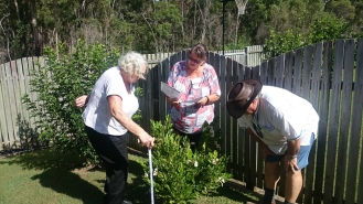 By Maryborough Garden Club ___ spotting-2