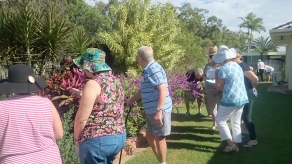 By Maryborough Garden Club ___ spotting1
