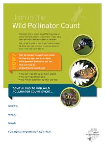 Wild Pollinator Count event flyer - custom